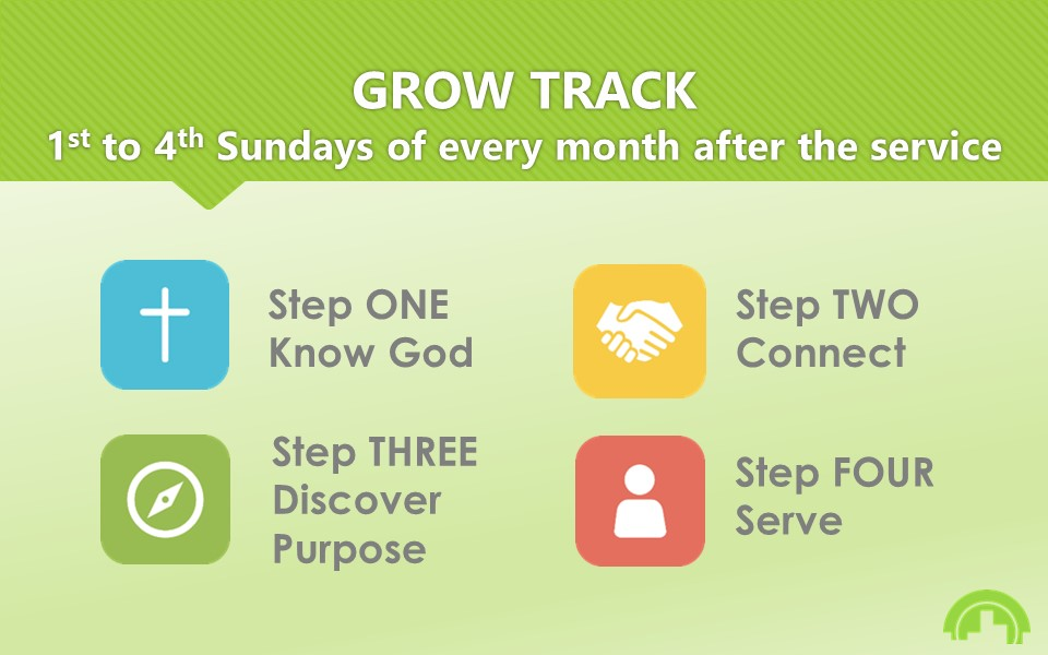 New 16 by 10 Grow Track